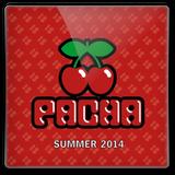 VA - Pacha Summer (2014)