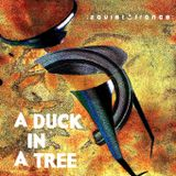 A Duck in a Tree 2012-07-21   Men Shall Know Nothing of This