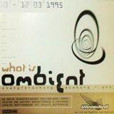 Air Liquide / Cristian Vogel @ What Is Ambient Festival - Ultraschall München - 11.03.1995 - Pt 3