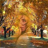 Sekoy-Осенний Марафон 5