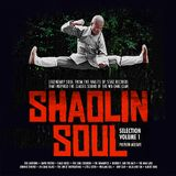 Shaolin Soul Selection: Volume 1