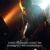 Introspect Recordings 12 Chris Kurbanali [Sheshak] Vibes n' Stuff Mix