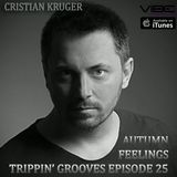 Trippin' Grooves Ep. 25 - Autumn Feelings - Live @ VibeFM Romania on 12.10.2013