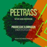 Peetrass - Progressive Ilumination 001 NSU podcast