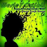 WesLey CaSaLi - Enjoy New Experience With Deep Tech House - May 2013