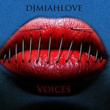 DJMiahLove - Voices (Vocal Tech House Oct 2012)