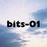 bits-01