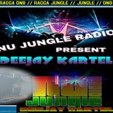 NU JUNGLE RADIO MIX BY DEEJAY KARTEL 29.08.15