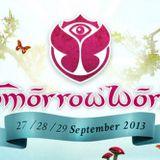 Fedde Le Grand - Live @ TomorrowWorld (Atlanta) - 27-09-2013