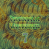 Psychedelic Wonderfuzz #7