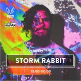 Rabbits in the Sand - Storm Edition - The Block Tel-Aviv 2017 - Omri Guetta