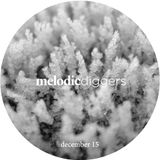 Melodic Diggers 30 min Podcast - w/ Rival Consoles, Stephan Bodzin, Agents Of Time, Dixon...