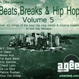 BEATS, BREAKS AND HIP HOP - Volume 5. The 80's Soul edt