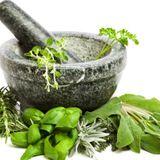 Las hierbas aromáticas en la gastronomía