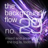 The Background Flow 29