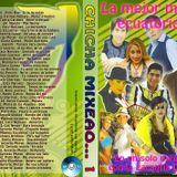 CHICHA 1 MEGAMIX DEE JEX DVDRip MP3 (71 min)