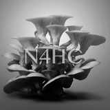 N4HC 04-12-14 on Modulate FM radio