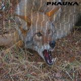 Phauna Podcast 05 I JPhilipps b2b Chester Cave