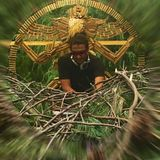 Parvati In Dub 2016