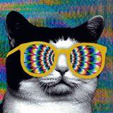 Techno Cats - That Techno Tho