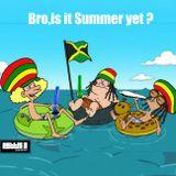 Bro, is it Summer Yet ?