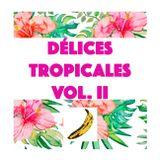 Délices Tropicales Vol. II [05.2017]