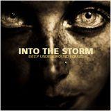 "DEEP UNDERGROUND HOUSE - ""Into the Storm"""