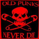 punks not dead its just resting