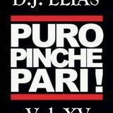 DJ Elias - Puro Pinche Pari Vol. XV