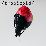 Tropicold #3 ft The Ed, décembre 2016