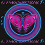 Dj-NACHTwANDLER-DURCH die fUll pSy oNacht-FsO NACHTwERK RECORD.2012