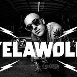 Yelawolf - Live@ Splash Festival 2011 (live cut by mokilog)