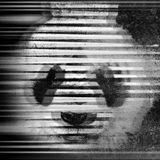 Speed Garage Panda