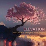 Elevation - Jazz: Soulful, Swinging, Hot & Sweet