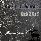 Eiszeit (Continuous DJ Mix)