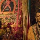 mind-dala