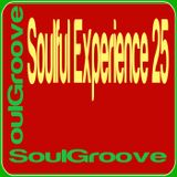 SoulGroove - Soulful Experience 25