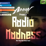 Radio Madness #27(Progressive - Electro  House)