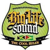 Big Life Sound Reggae/Culture Juggling 2017 - Selector Wiz