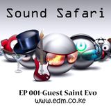 Sound Safari 002 - Guest Saint Evo