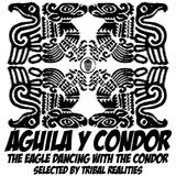 Aguila y Condor