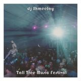Live @ Tall Tree Music Festival