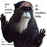 do the meerkatz,baby-a slow dance experience by jense & dada hu