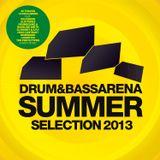 Spectrasoul @ Drum&BassArena Summer Selection 2013 album launch