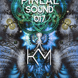 Pineal Sound 017 - PROGRESSIVE VIBES FOR YOUR SOUL