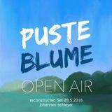 Pusteblume Festival Live Set (reconstructed)