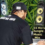 JUNGLE 15 MIN'S MUSIC MIX