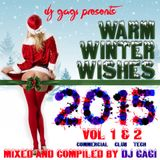 Warm Winter Wishes 2015 vol.1 [selected & mixed by GaGi]