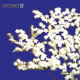 LIFEFORCE#12: Where Is My Mind