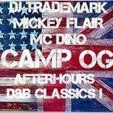 DJ Trademark Feat. MC Mickey Flair & MC Dino (Camp OG Nocturnal Wonderland 2016)